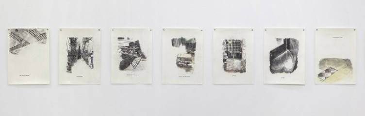 Eirene Efstathiou, Field Dispatch from the Earnest Cartographer, 2010 Pencil and transfer on paper 7 works: 27.5 x 20 cm