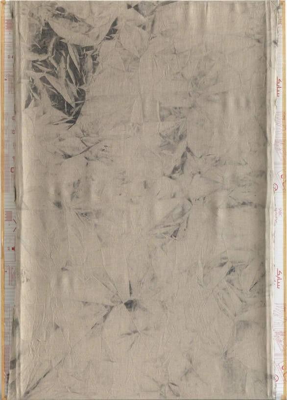 Christina Michalis, Untitled, 2010, Pigment on canvas, polycarbonate, 210 x 150 cm