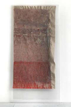 Untitled, 2011, Watercolour, pigment on canvas, polycarbonate, 250 x 120 cm