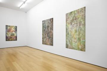 Liam Everett, Installation view