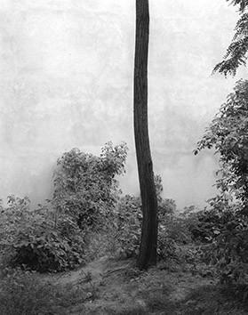 Michael Schmidt, Untitled from 89/90, 2009, Gelatin silver print, 60 x 50 cm (framed), Edition 3/4 + 1AP